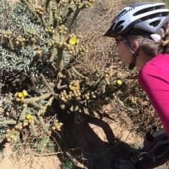Mountain biking and botany