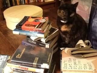 Books + Cat = Happiness
