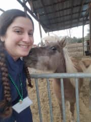 Girl Scout Horse Camp