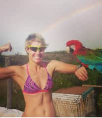 Patriot the parrot in Hawaii!