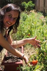 We started growing food in larger quantities last year. The tomatoes were delicious!
