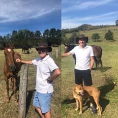 Hunter Valley farm sit