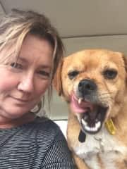 Rescue dog transport