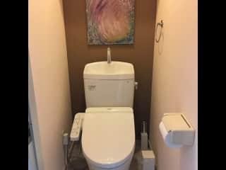 Toto toilet with bidet.