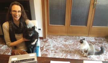 Who can get work done with two cute dogs and a fluffy cat to cuddle?