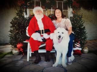Even furbabies like seeing Santa
