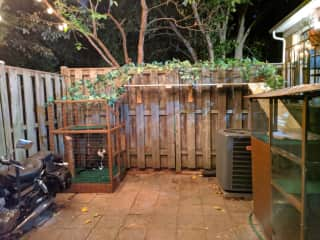 Backyard catio