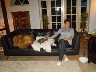 Sharing the sofa in Epe, Holland