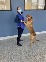 Jen with Remington, a pup at the animal shelter in our hometown - he loves to dance!