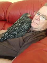 Phil and Ebony.  Chickens really like to snuggle.