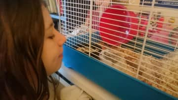 My daughter and the school guinea pig.