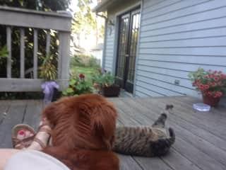 Jinji, Jemima with me on the porch!