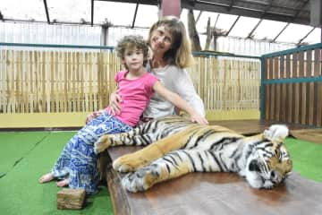 Petting a baby tiger in Thailand last year