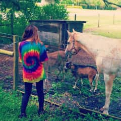 Caitlin feeding local friends