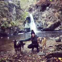 Daily hikes with Lola & Bertie, from my recent TrustedHousesitters assignment in France!