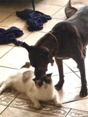 LuLu and Eugene