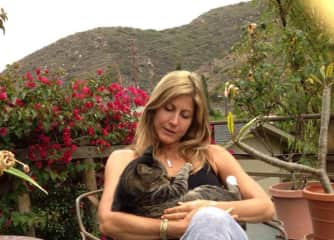 Buster cat in Laguna Beach , ca. A perfect Sunday afternoon !!