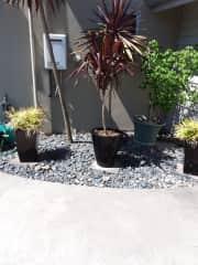 corner garden outside garage