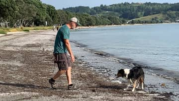 Don and Pip playing fetch (housesit at Snells Beach, New Zealand)