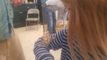 Daxton holding a lizard from the wild animal rescue