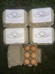 Marketing - Farmers Market Highlands, NC USA