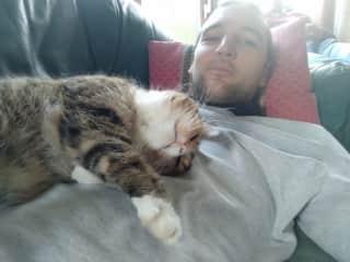 Ronan and his cat