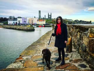 House and dog/cat sitting near St Andrews, Scotland (Dec 2017)