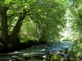 A nearby stream walk