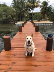 Marley traveled to Belize
