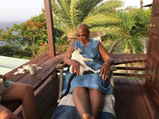 Afternoon chats and  cuddles with Lulu the Island Kitty. A memorable housesit in Antigua, BWI