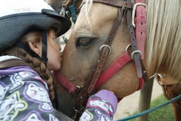 We love horses too! We've gone riding several times as a family -- treasured memories!