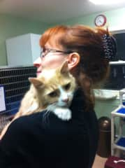 Giving and receiving love at the shelter while furever family arrives!