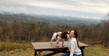 Our Sophie/Mt. Wachusett Hike