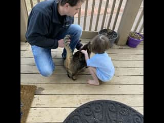 Always taking any opportunity to discuss animal etiquette! Our 3 year old is very aware and respectful of animals' body language. She also understands that not all animals want attention from her.
