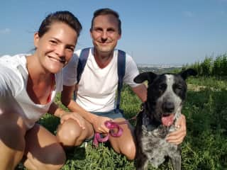 Our first Housesit together in Vienna with the lovely mongrel dog Luna (13).