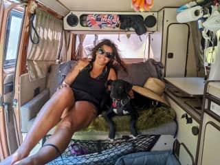 Hanging in my van with my dog Boomer (in the sombrero) and Issa - a puppy I rescued/fostered from Baja, Mexico this year.