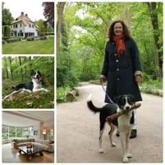 THS-Blaricum The Netherlands-British expats- Border Collie-3x1 week and several weekends in 2018/2019