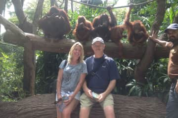 Hanging with the Orangutan clan at in Singapore