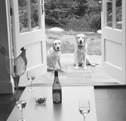 Beryl and Hector (RIP) outside the kitchen