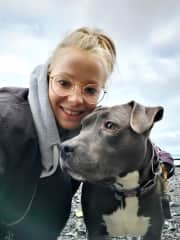 A beach walk with Kona - a beautiful and mellow pit bull. Seattle.