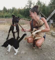 Claire with her Uncle's dogs; Merlot & Rosco and cat Mittens, BC
