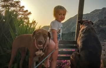 Pet-sitting on La Gomera