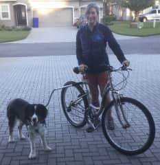Doc goes biking - St. Augustine FL