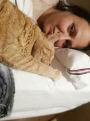 Sitting cat woman