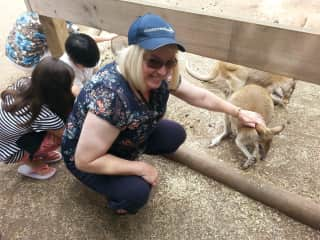 We LOVE animals. Deb's bucket list included Kangaroos and Wallabys in Sydney, Australia