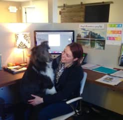 Bring your dog to work? Sure, even if it's not my dog!