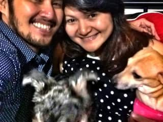 Our little family: my husband, Jeffrey; Me; our Miniature Schnauzer, Jamie; and our adopted mixed-breed, Tory.