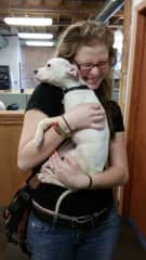Delilah was a foster pitbull of an old boss of mine, at my previous place of employment, when I still did graphic design in Chicago. I miss giving her hugs.