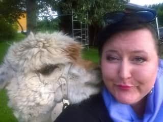 Päivi with Börje -Alpaca at Cultivo Alpacas, Finland