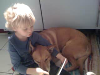Little K reading to our pups Kissie.